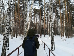 ノボシビルスク、春はリスがたくさんでます(2月)