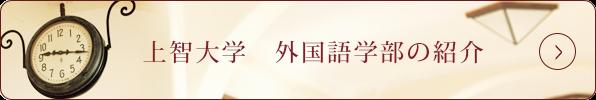 上智大学外国語学部の紹介