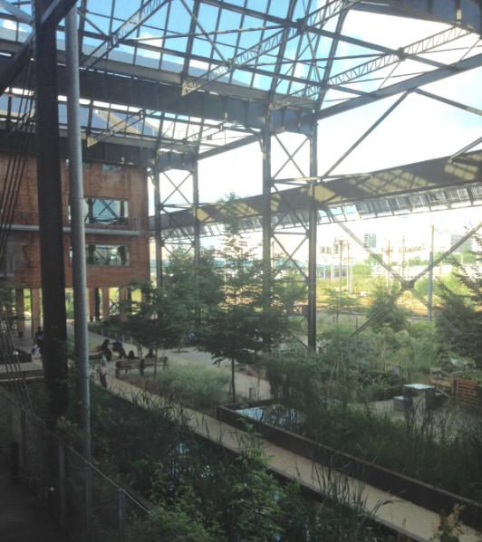ユースホステルの中庭