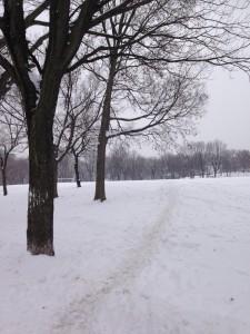 雪の日のジャンヌ・マンス公園