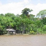 ブラジル北部、アマゾン川のほとりにある民家。