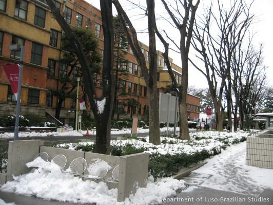 雪が残る1号館前
