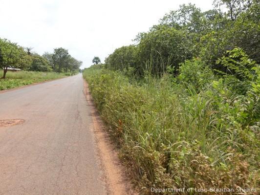 Verde-Guine Bissau