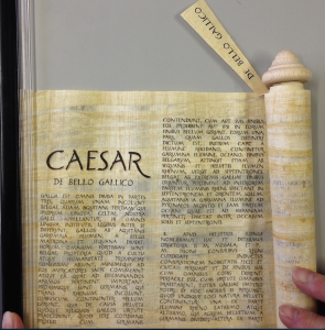 パピルスの巻物:カエサル『ガリア戦記』(スペインの業者より購入)